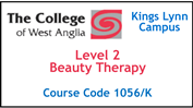 Form 016 / 17 - Level 3 Beauty Therapy (Course Code 1006/K)