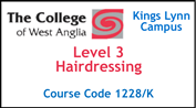 Form 005 - Level 3 Hairdressing (Course Code 1228/K)