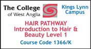 Form 002 - Hair Pathway - Introduction to Hair and Beauty Level 1 (Course Code 1366K)