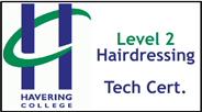 Form 004 - Level 2 Hairdressing Technical Certificate