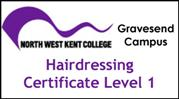 Form 001 - Hairdressing Certificate Level 1
